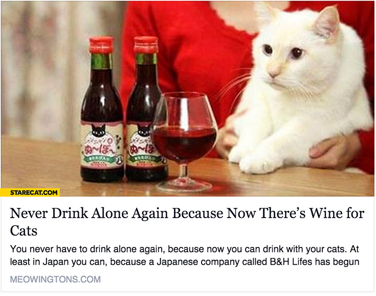 never-drink-alone-again-now-theres-wine-for-cats