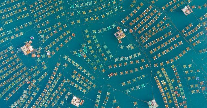 Areofotografia to dowód na to, że świat jest piękny. Najlepsze zdjęcia zrobione z lotu ptaka robią wrażenie!