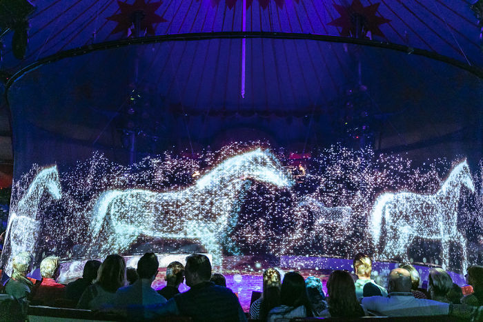 Hologramy zwierząt w niemieckim cyrku