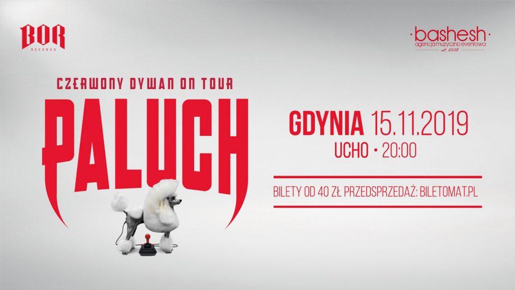 Paluch w Gdyni