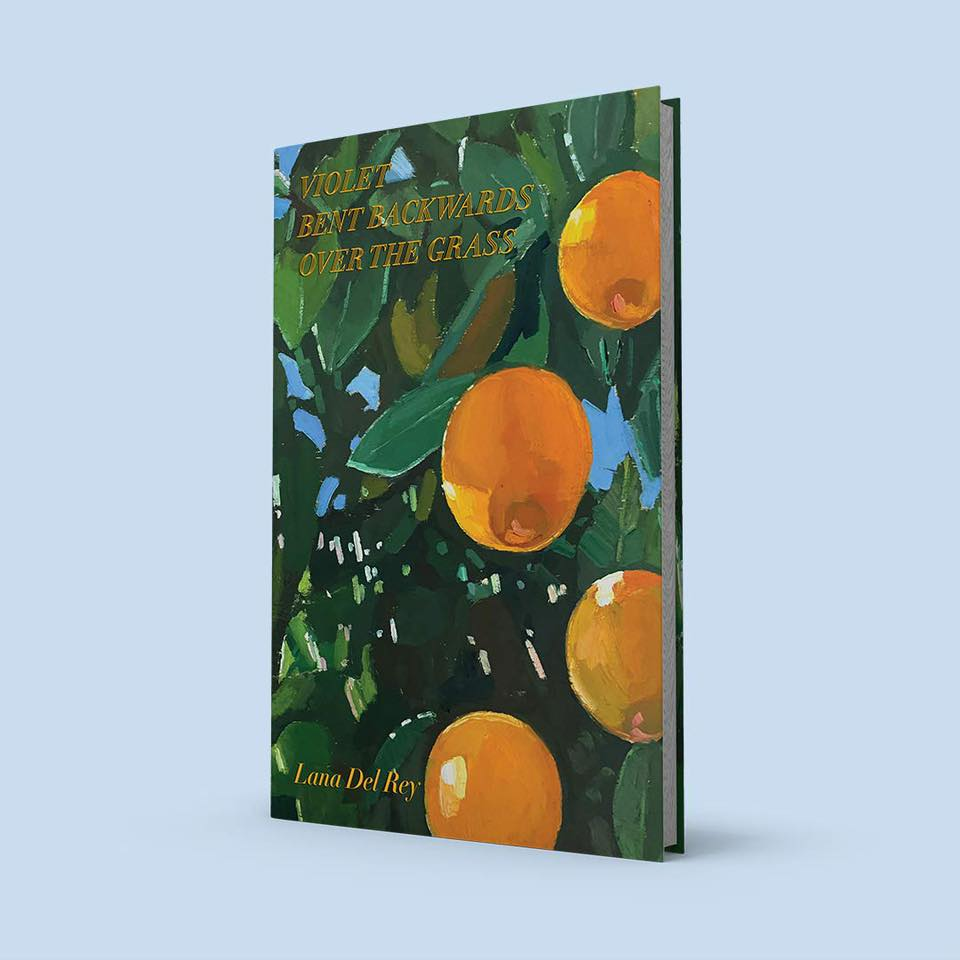 Lana Del Rey książka