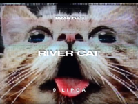 Tama Staff | River Cat