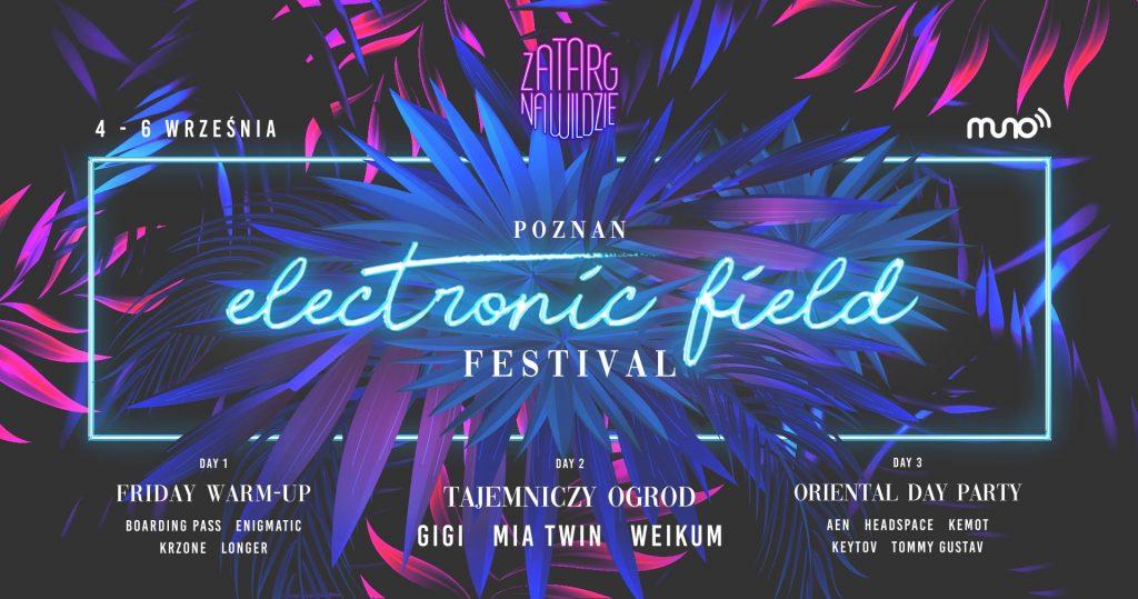Poznan Electronic Field Festival