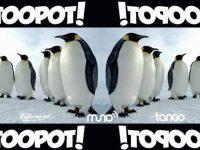 !TOOPOT! | 03.10 MIXcoolTURA