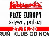 Kobranocka, Róże Europy, Sztywny Pal Azji | 27.11.2020 Toruń
