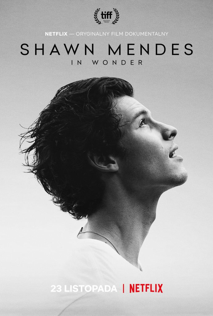 Shawn Mendes - In Wonder