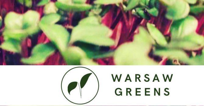Less waste w centrum Warszawy. Jak wygląda prowadzenie eko-farmy w stolicy?