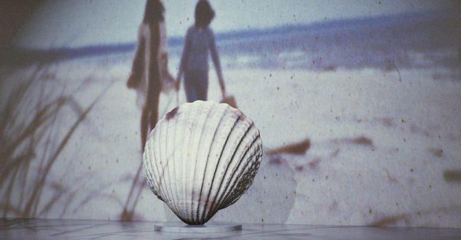 Ocalmy Bałtyk. Tegoroczna Godzina dla Ziemi będzie poświęcona ratowaniu naszego morza