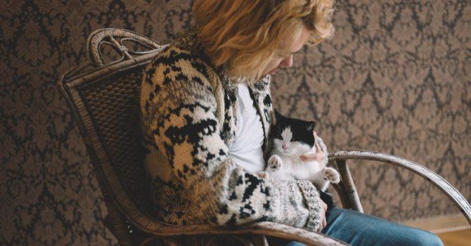Kodraccy przedstawiają kocią symfonię, zaśpiewaną przez… Koty!