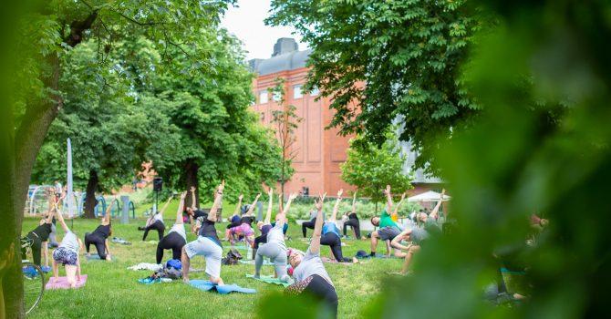 Lato w parku: Joga i treningi z Harder