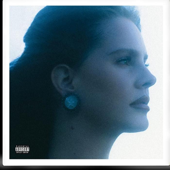 Lana Del Rey Blue Banisters album
