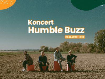 Koncert Humble Buzz na Nocnym Targu