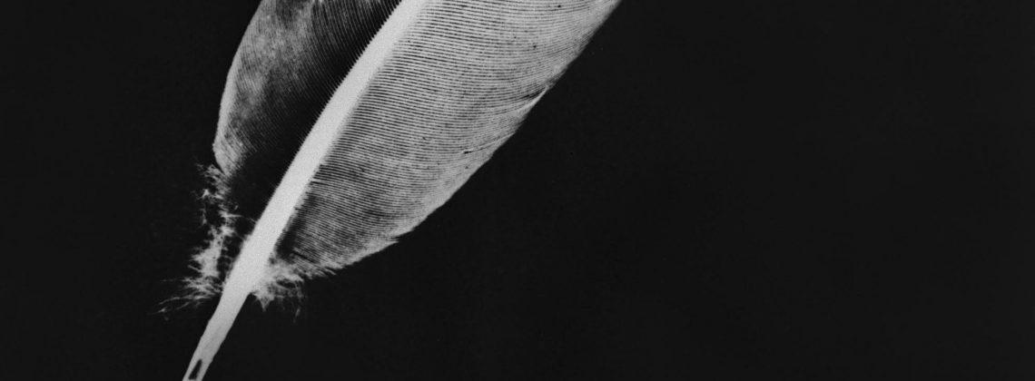Warszawski koncert Cigarettes After Sex przeniesiony