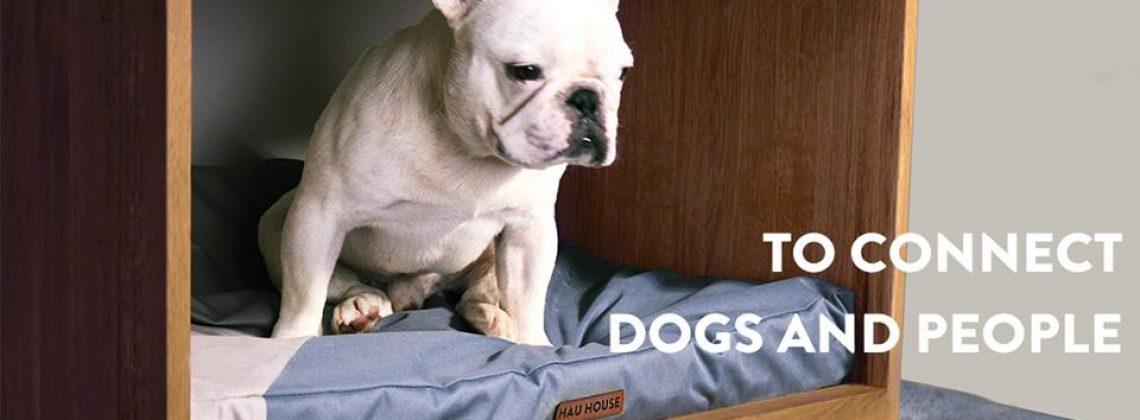 HAU HOUSE robi meble dla wszystkich dog lovers!