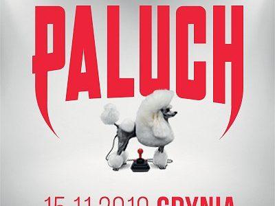 Paluch – Gdynia