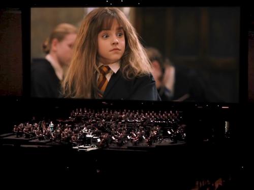 Zagrają muzykę z Harry'ego Pottera na żywo w Polsce!