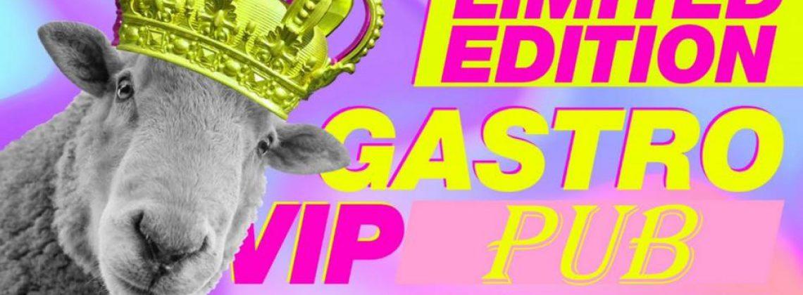 GASTRO VIP PUB/Pan Stencel/VIP GASTRO wejście free!