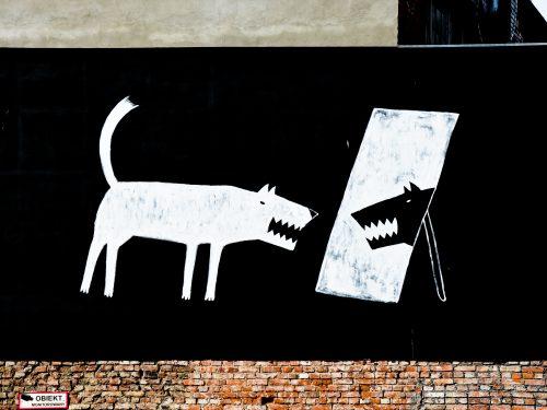 Powstała trzecia odsłona mapy murali, graffiti, neonów i typografii w Poznaniu