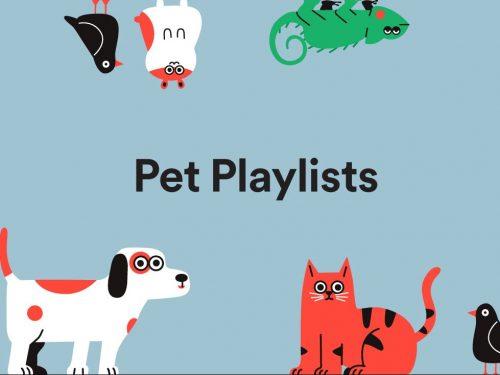 Spotify zagra ulubione utwory Waszych zwierząt. Sprawdźcie najnowsze playlisty