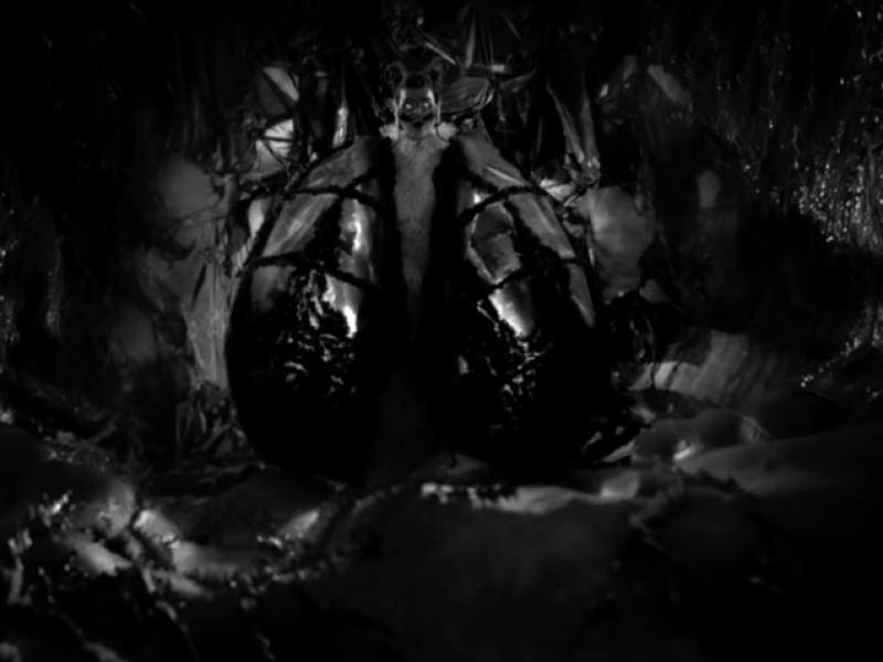 Björk po raz kolejny udowadnia, że jest kosmitką. Klip do Notget jest nie z tego świata.