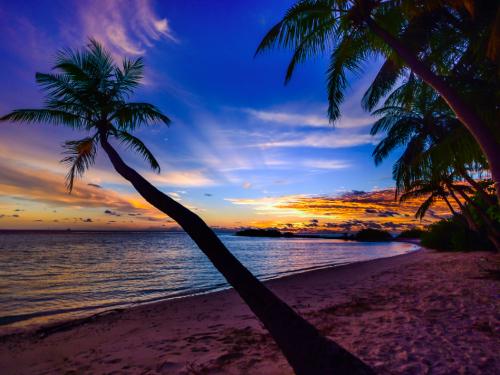 Tropiki, przygody, dzikie plaże i pływanie z rekinami… W Meksyku czeka na Ciebie praca marzeń!