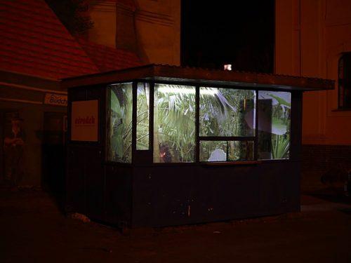 Stary kiosk na poznańskiej Śródce zamieniono w… galerię sztuki! W Ośrodku panuje wyjątkowy mikroklimat.