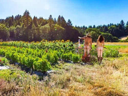 Zbliża się World Naked Gardening Day. W ogródkach całego świata znów będzie goło i wesoło.