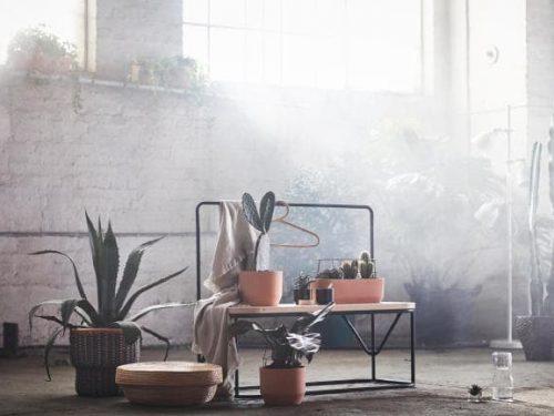 IKEA wypuszcza kolekcję w stylu ZEN!