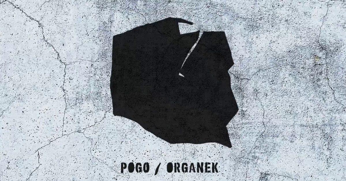 """Organek powraca w techno wydaniu? Posłuchaj nowego singla """"Pogo"""""""