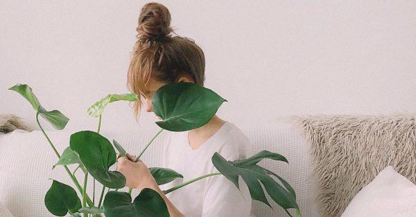 Jakiej muzyki słuchają Twoje rośliny?