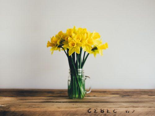 Nasze TOP 5 pomysłów na wiosenne DIY w mieszkaniu!